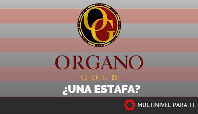 ¿ Organo Gold es una estafa?